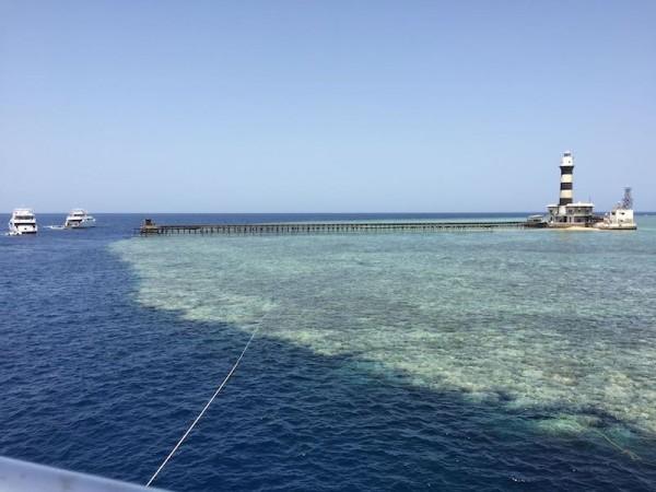 Rudé moře Daedalus reef